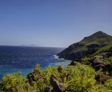 Campbell Estate - Saba Island Premier Properties