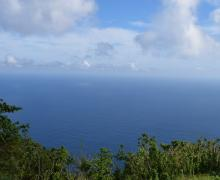 The Reach - Saba Island Premier Properties