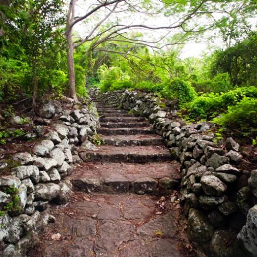Hike the Mount Scenery Trail