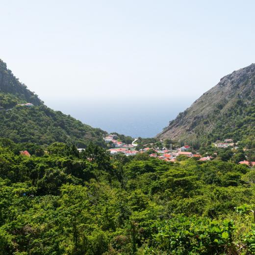 Saba Island Premier Properties - Image by Flash Parker