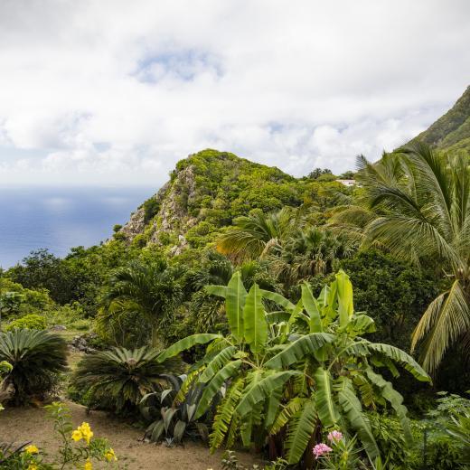 Saba Island Premier Properties