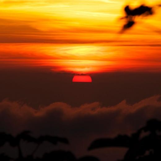 Saba Sunset