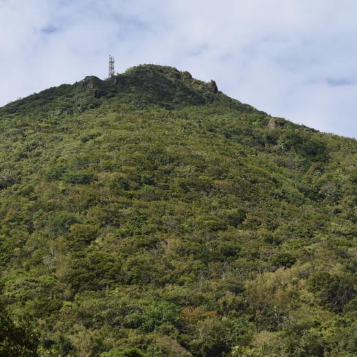 Every Estate - Saba Island Premier Properties