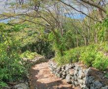 Eden Walk - Saba Island Premier Properties