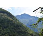 Cottage Brandibella - Saba Island Premier Properties