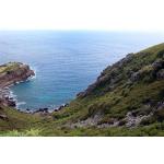 Campbell Estate - Saba Island Premier Properties