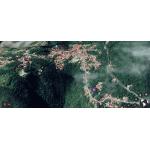 English Quarter Meadow - Saba Island Premier Properties