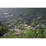 Gladys' Saban Homestead - Saba Island Premier Properties