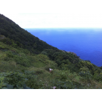 Pointe Paradise - Saba Island Premier Properties