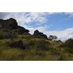 Soleil Caris - Saba Island Premier Properties