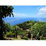El Momo View - Saba Island Premier Properties