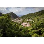 Endless Summer ~ Troy Hill - Saba Island Premier Properties
