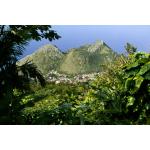 The Promise Land House - The Bottom - Saba Island Premier Properties