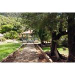 The Bottom - Saba Island Premier Properties