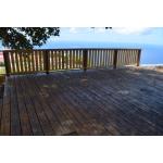 Vinyard Cottage - Saba Island Premier Properties